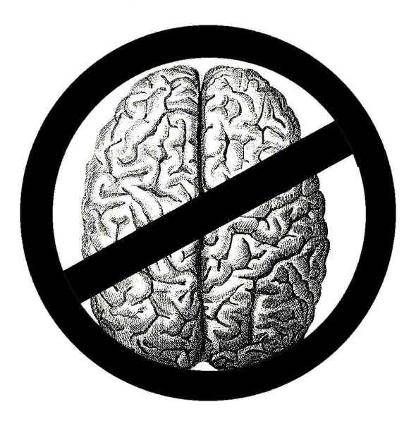no-brains-allowed